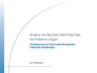 Analyse von Big Data: Wenn Big Data für Probleme sorgen (c) Information Builders Inc.